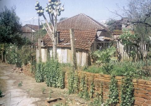 brazilija-573