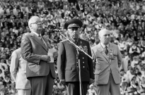 02.DZSV1985 – Janaitis