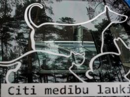 CITI MEDLAUKI-Janaitis-9079995